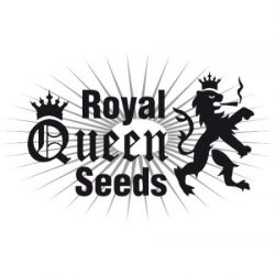 semena_konopli_royal-queen-seeds-1-250x250